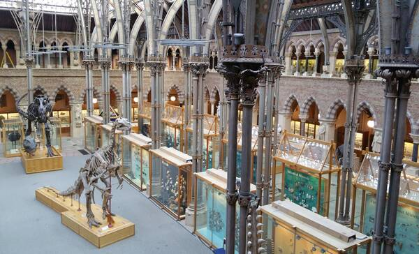 Pitt Rivers Natural History Museum, Oxford, Engeland